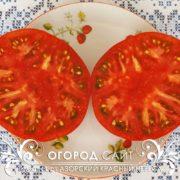 pomidor-azorskiy-krasny-nevesa-2