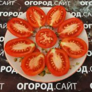 сорт томатов дамский пальчик урожайность