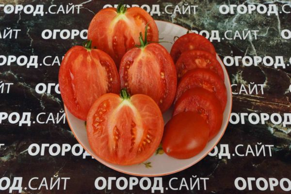 гибрид тарасенко характеристика купить семена