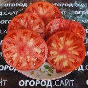 сорт томатов валютный