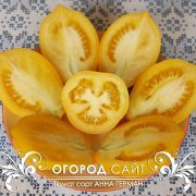 pomidor_anna_german_2