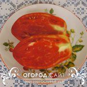 pomidor_oslinye_ushi_2