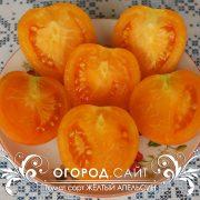 pomidor_zhelty_apelsin_5