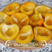 perets-sladkiy-yantarny-2