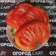 Томат Розовый Дон (сызранский)