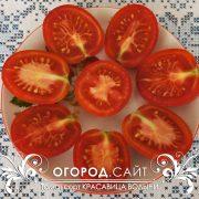 pomidor_krasavitsa_volyni_2