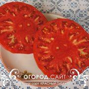 pomidor_krasny_gigant_4