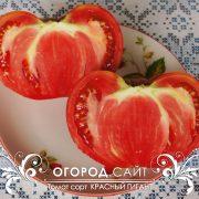 pomidor_krasny_gigant_5