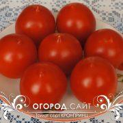 pomidor_kronprints_2
