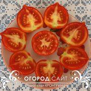 pomidor_kronprints_3