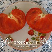 pomidor_mazarini_2