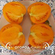 pomidor_medovo-saharny_4