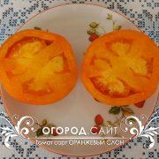 pomidor_oranzhevy_slon_4