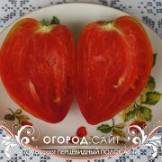pomidor_pertsevidny_polosaty_2