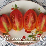 pomidor_pertsevidny_rozovy_2