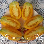 pomidor_pertsevidny_zhelty_2