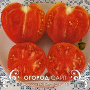 pomidor_razbitoe_serdechko_3