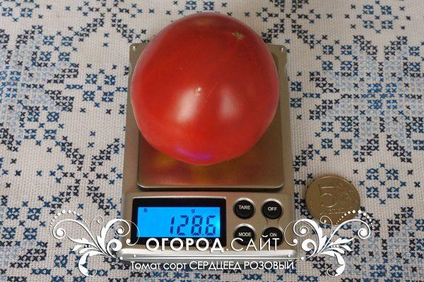 pomidor_serdtseed_rozovy_1