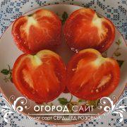 pomidor_serdtseed_rozovy_2