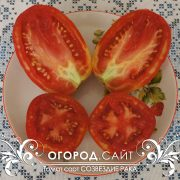 pomidor_sozvezdie_raka_1