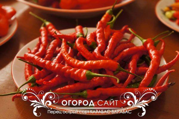 perets-ostry-karabas-barabas-3