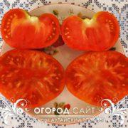 Семена помидоров Алтайский розовый