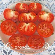 pomidor-domashny-4