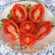 pomidor-kolokola-rossii-6