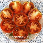 pomidor-kubinskiy-fioletovy-2