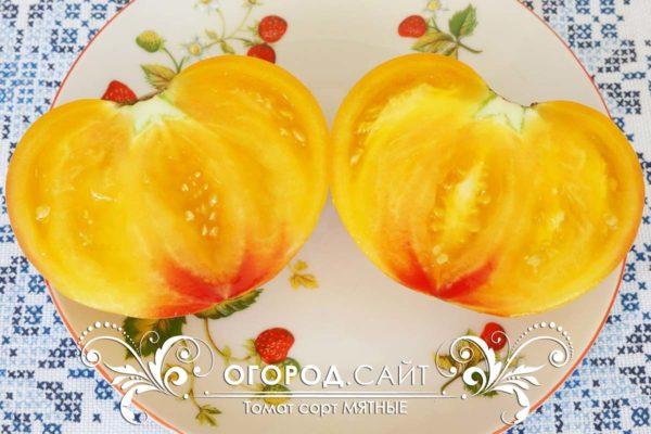 семена томатов от коллекционеров мятный
