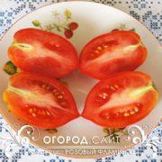 pomidor-rozovy-flamingo-3