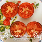 pomidor-siniy-2