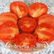 томат клубничное дерево фото характеристика