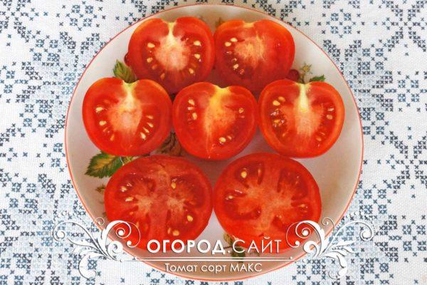 pomidor-maks-2