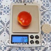 pomidor-vinogradny-gigant-4