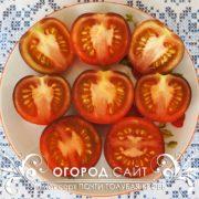 pomidor-pochti-golubaya-krov-1