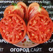 томат боковой красный минусинский