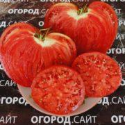 сладкий помидор бочковой минусинский розовый в разрезе