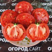 Томат Липецкий яблочный