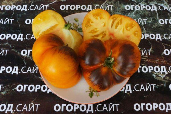 редкий сорт томата мечта алисы
