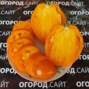 томат стаканы минусинские оранжевые