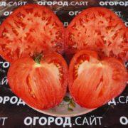 помидор властелин минусинский на разрезе