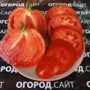 pomidor-podsinskaya-liana-minusinskaya-3