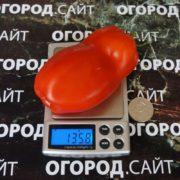 Томат Стаканы минусинские красные