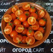 томат черри оранжевый фото
