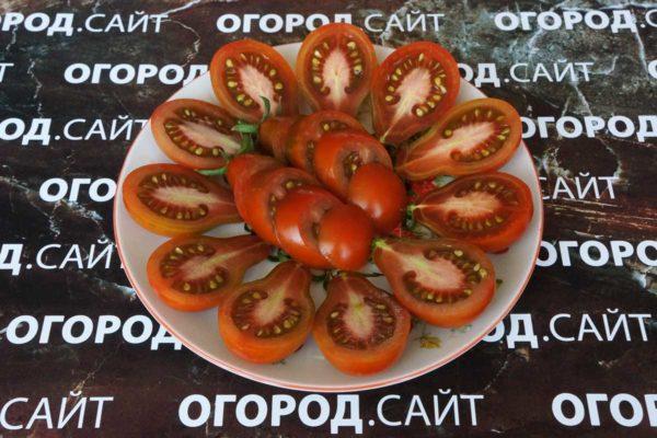 томат джессика фото