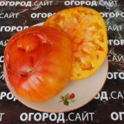 томат гавайский ананас фото урожайность