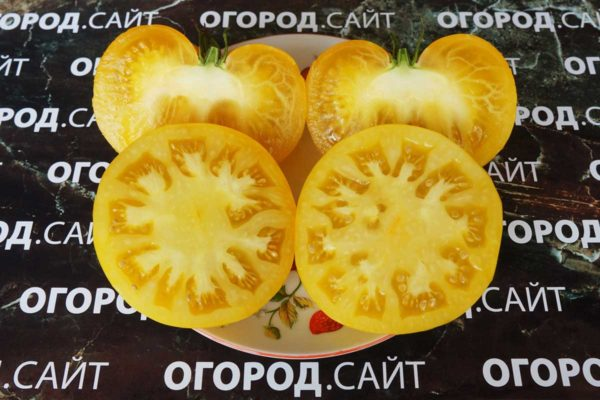 коллекционные сорта томатов от коллекционеров