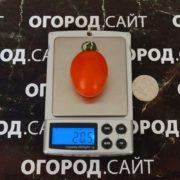 советский томат черри лебяжинский