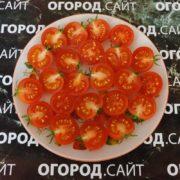 томат мини том